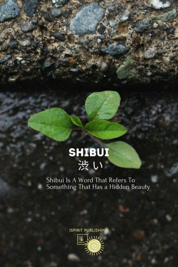 Japanese enchanted words-Shibui 渋 い