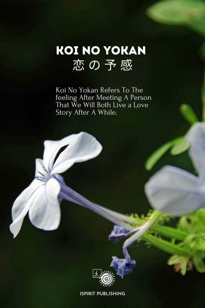 Japanese poetic words-Koi No Yokan 恋 の 予 感
