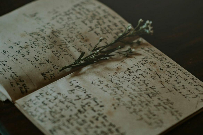 Writing a Memoir: Transforming Scars into Stories